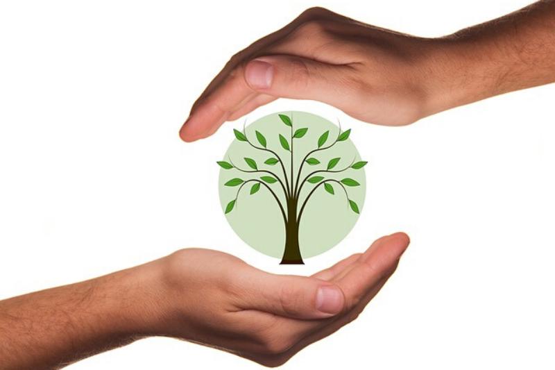Cómo enamorar a tus clientes con envases biodegradables