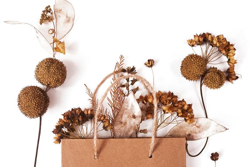 envases de otoño jimara packaging